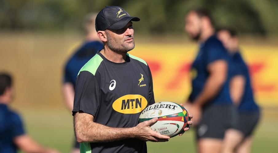 Camiseta Rugby Sudafrica Replicas